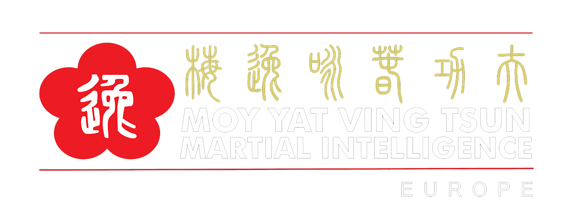 Wing Chun Madrid Kung Fu